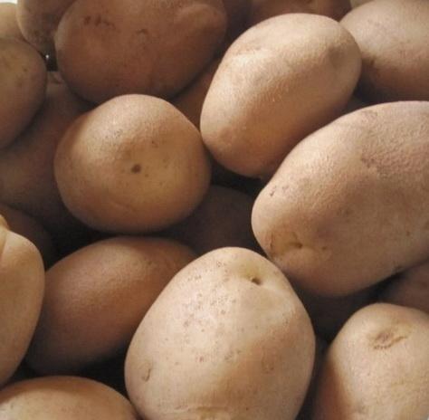 Уход за посадками картофеля удача