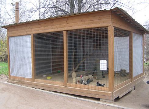 сооружение вольера для фазанов