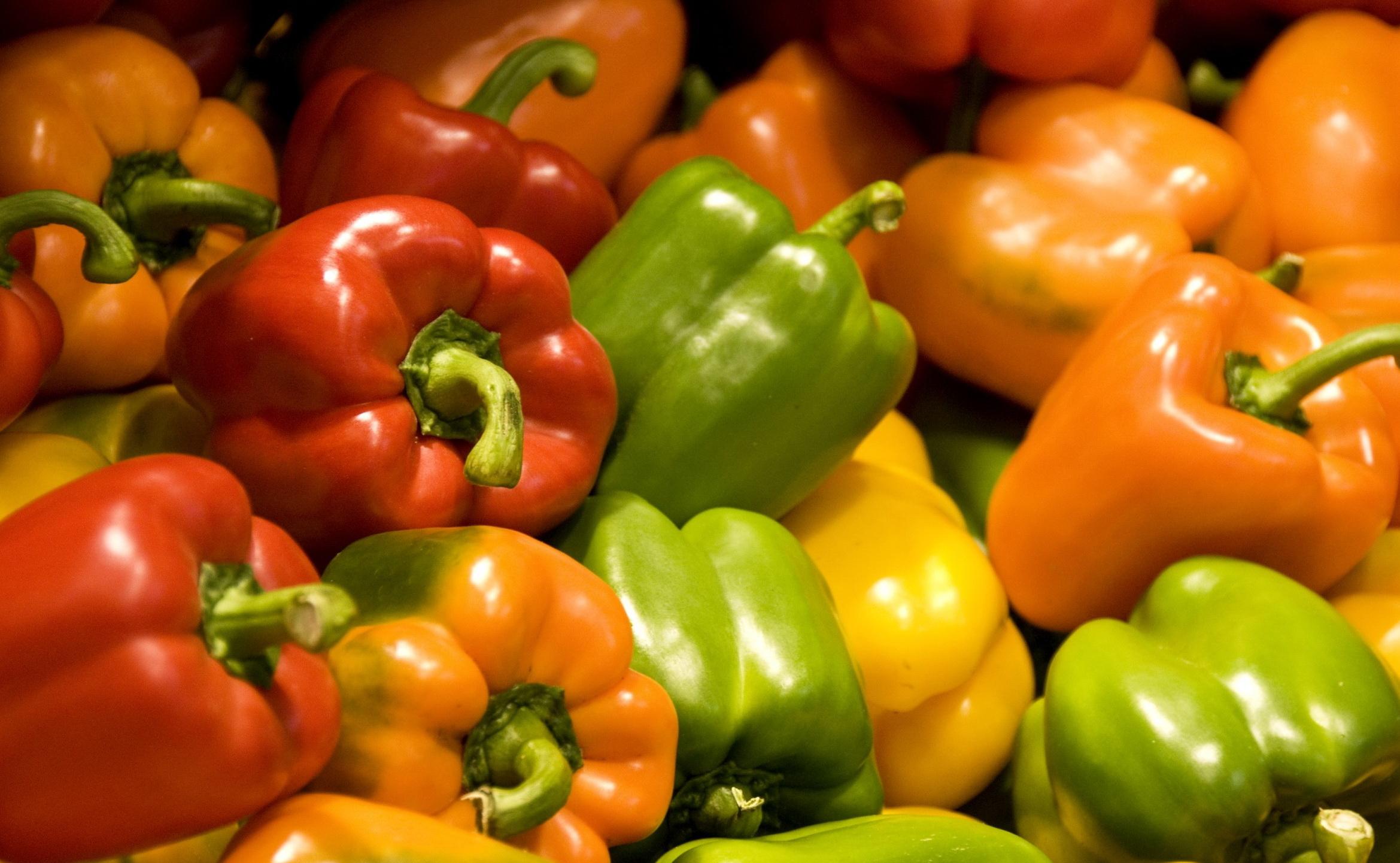 семена перца болгарского сорта для теплиц