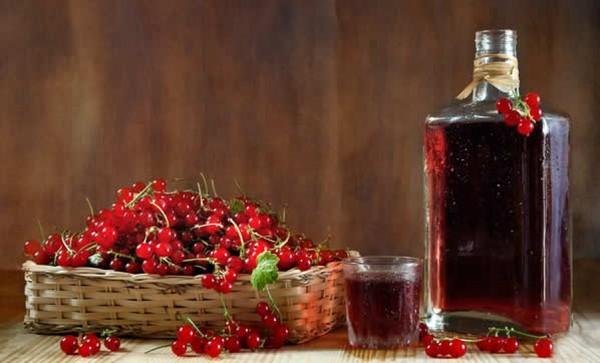 Домашнее вино из красной смородины пошаговый рецепт