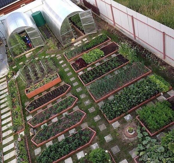 красивый дизайн сада огорода