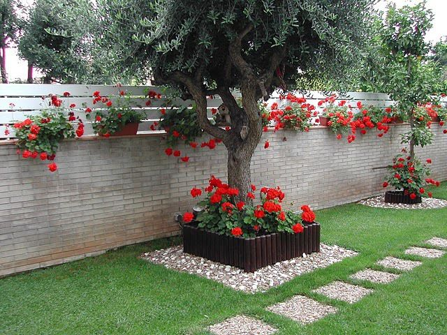 дизайн огорода вокруг дерева