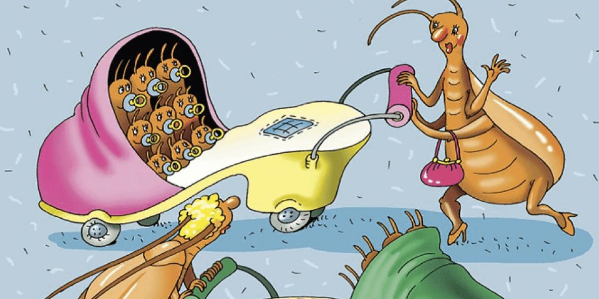 как избавиться от тараканов в квартире