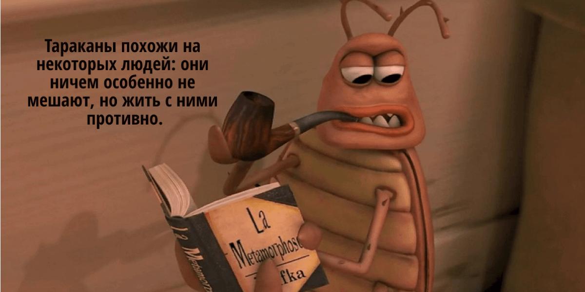 чего боятся тараканы больше всего и как от них избавиться в квартире
