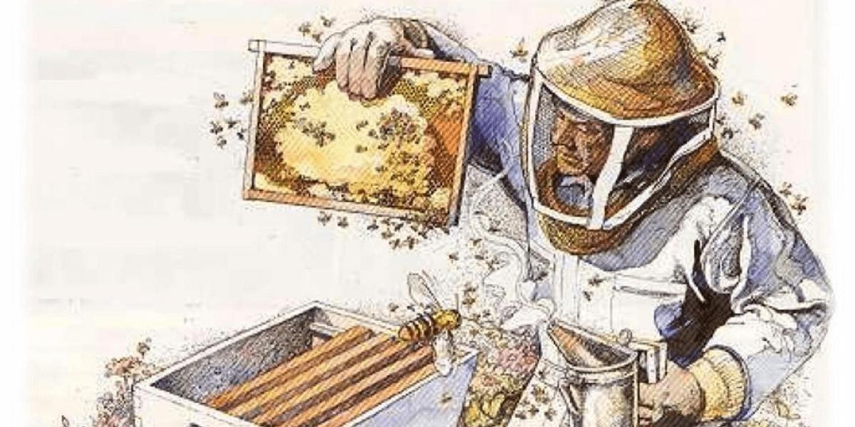 Чем пользуется пчеловод для усмирения пчёл во время осмотра